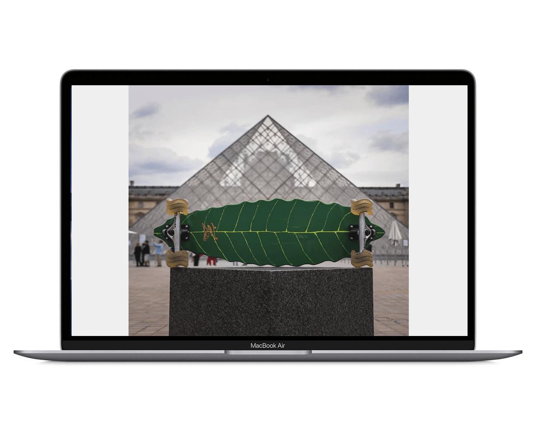 leaf fesign pyramid-min